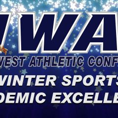 Winter Sports Academic Excellence